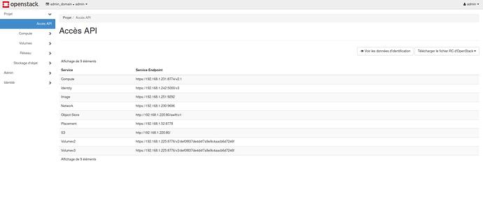 Screenshot_2020-05-30%20Acc%C3%A8s%20API%20-%20OpenStack%20Dashboard