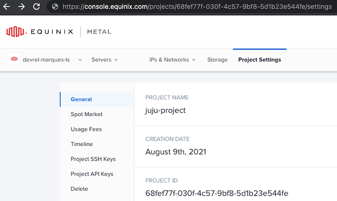 Equinix Metal console showing project id